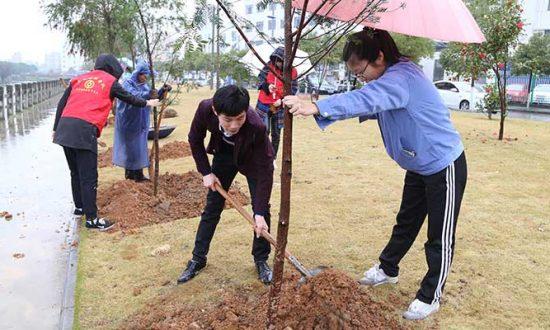 """合兴携同中行举办第二届新婚夫妇""""爱情林""""植树护树活动"""